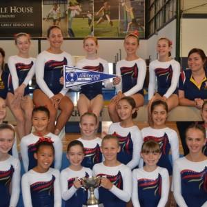 img-club-gymnastics